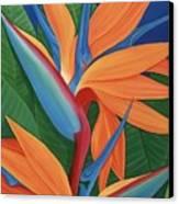 Tropical Paradise Canvas Print by Lisa Bentley