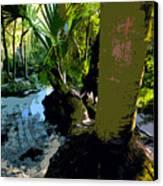Tropical Spring Canvas Print