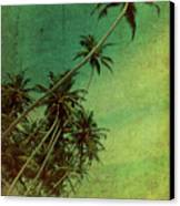 Tropical Vestige Canvas Print by Andrew Paranavitana