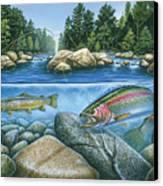 Trout View Canvas Print