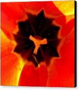 Tulip Art Canvas Print