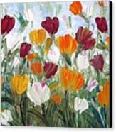 Tulips Garden Canvas Print