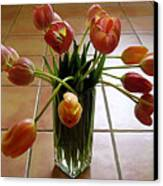 Tulips In A Vase On Tile Canvas Print