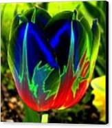 Tulipshow Canvas Print