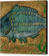 Turquoise Carp Canvas Print by Anna Folkartanna Maciejewska-Dyba