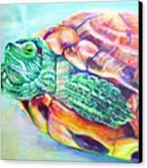Turttleneck Canvas Print