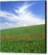 Tuscan Clouds Canvas Print