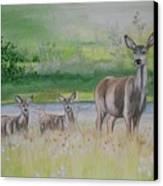 Twins In The Quabin Canvas Print