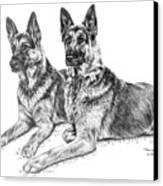 Two Of A Kind - German Shepherd Dogs Print Canvas Print by Kelli Swan