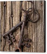 Two Old Skeletons Keys Canvas Print by Garry Gay