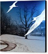 Two Seagulls Fly Together In The Clear Blue Sky Canvas Print by Fernando Cruz