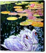 Two Swans In The Lilies Canvas Print