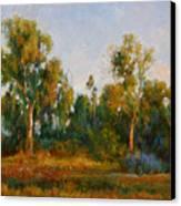Ulistac Natural Park  C Canvas Print