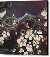 Ume Blossoms Canvas Print