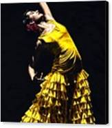 Un Momento Intenso Del Flamenco Canvas Print