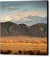 Under  Big Skies Of Montana Canvas Print by Doug van Kampen, van Kampen Photography