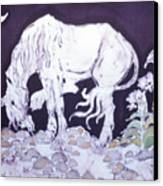 Unicorn Pauses Canvas Print