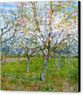 Van Gogh The Pink Orchard Canvas Print by Vincent Van Gogh