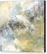 Vanishing Seagull Canvas Print by Melanie Viola