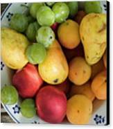 Variety Of Fresh Summer Fruit On A Plate Canvas Print