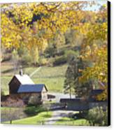 Vermont Beauty Canvas Print by Lyn Vic