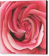 Vertigo Rose Canvas Print by Ken Powers