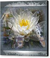 Very Koi Canvas Print