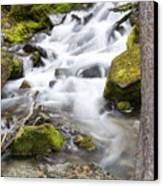 Vibrant Waterfall Landscape Canvas Print by Dana Moyer