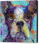 Vibrant Whimsical Boston Terrier Puppy Dog Painting Canvas Print by Svetlana Novikova