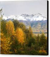 View From My Studio October 2008 Canvas Print
