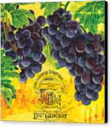 Vigne De Raisins Canvas Print by Debbie DeWitt