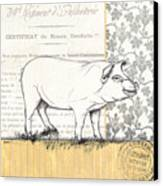 Vintage Farm 2 Canvas Print by Debbie DeWitt