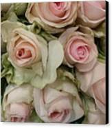 Vintage Pink Roses Canvas Print by Lynn Jackson