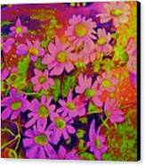 Violets Among The Heather Canvas Print