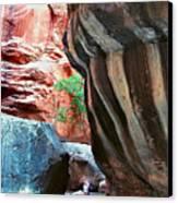 Virgin River Narrows Canvas Print