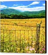 Virginia Fields Of Green Canvas Print by David Hahn