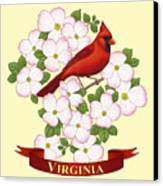 Virginia State Bird Cardinal And Flowering Dogwood Canvas Print by Crista Forest