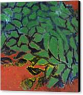 Vitanoah Canvas Print