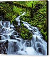 Wahkeena Canvas Print by Chad Dutson