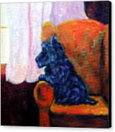 Waiting For Mom - Scottish Terrier Canvas Print