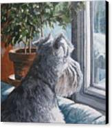 Waiting Patiently Canvas Print by Anda Kett
