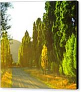 Wanaka Morning Light Canvas Print