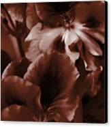 Warm Tone Monochrome Floral Art Canvas Print