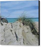 Warren Dunes Canvas Print