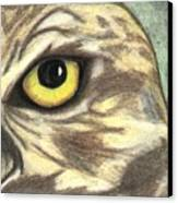 Watchful Eye Canvas Print