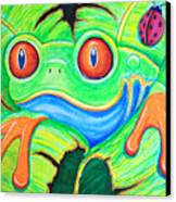 Watching You Red Eyed Tree Frog Canvas Print by Nick Gustafson