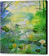 Water Lily Pond 1 Canvas Print
