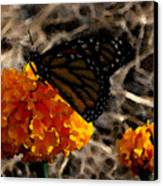 Watercolor Monarch Canvas Print