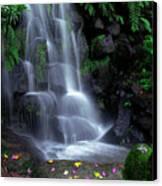 Waterfall Canvas Print by Carlos Caetano