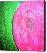 Watermelon Canvas Print by Inessa Burlak